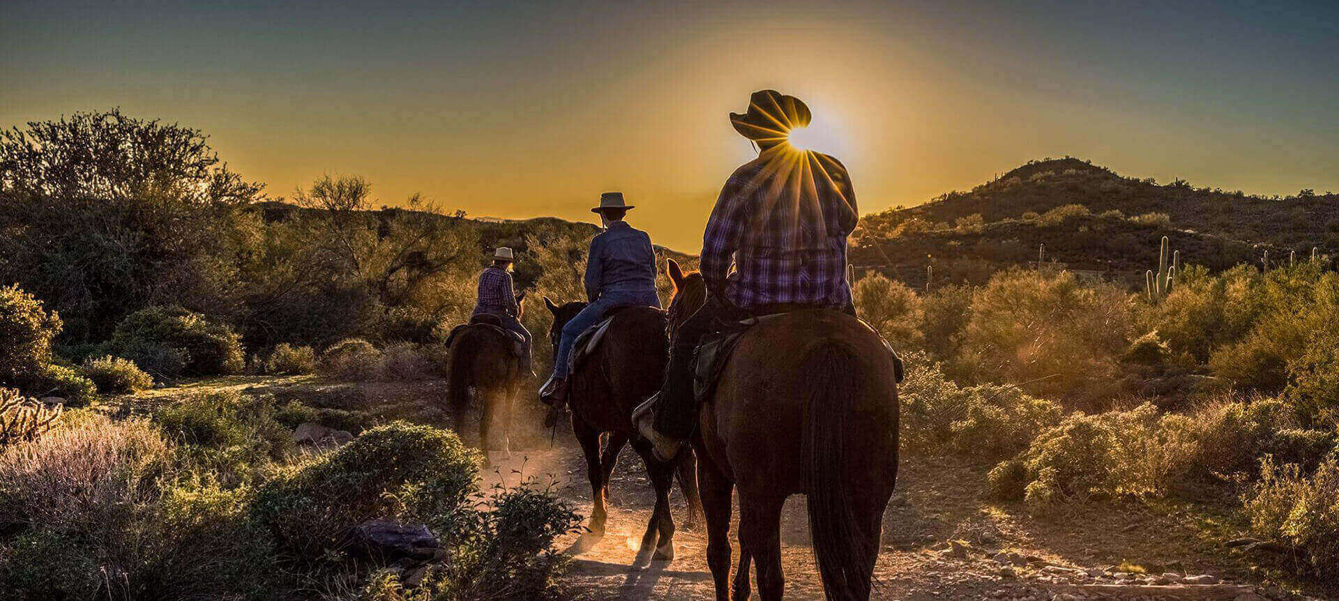 Horseback Riding Phoenix Az Cave Creek Trail Rides